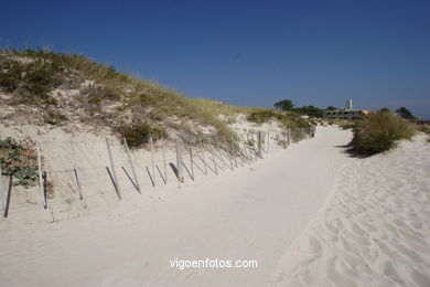 DUNE SYSTEM - CIES ISLANDS