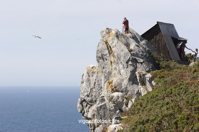 OBSERVATORIES OF BIRDS - CIES ISLANDS
