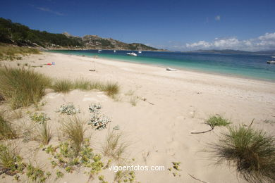 BEACH OF SAN MARTIÑO - CIES ISLANDS