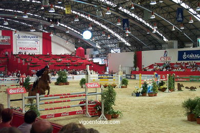 SHOW JUMPING COMPETITION - CSI 2002