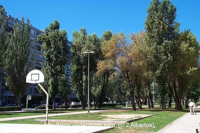 Fotos de jardines de castelao vigo galicia for Jardines galicia