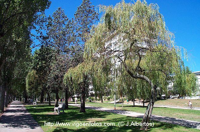 Fotos de jardines de castelao vigo galicia p3 for Jardines galicia