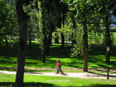 FOREST OF CASTRELOS PARK