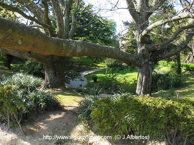 Fotos de bosque y jardines del parque del castro vigo for Carson bosque y jardin